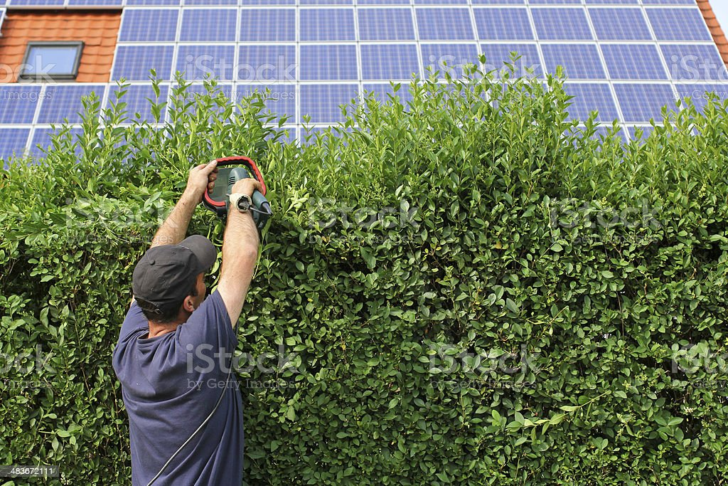 Worker is clipping a hedge, electricity background stock photo