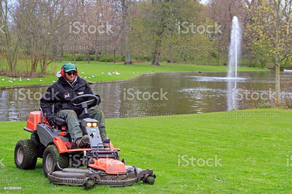 worker is cutting grass on lawn mower in park stock photo