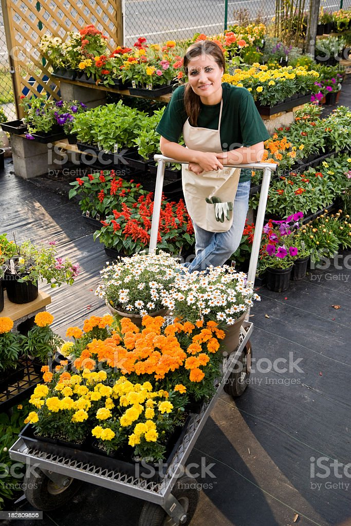 Worker moving merchandise in retail plant store stock photo