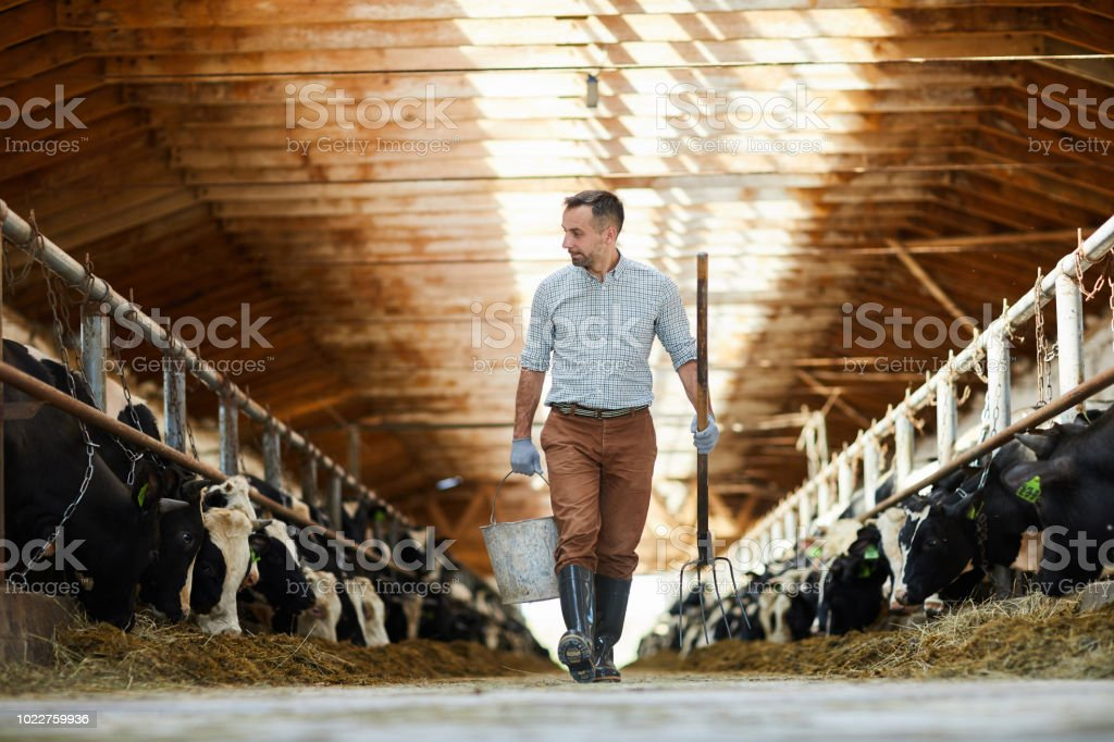 Arbeiter des Tierhaltungsbetrieb – Foto