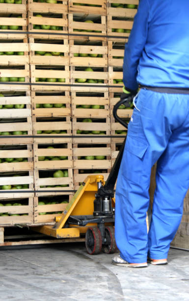 Arbeiter zieht Früchte heraus – Foto