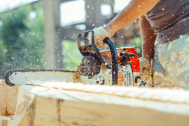 worker sawing a chainsaw tree - chainsaw stock photos and pictures