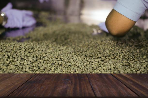 Arbeiter sortiert Auswahl grüne ungeröstete Kaffeebohne in Lebensmittelfabrik – Foto