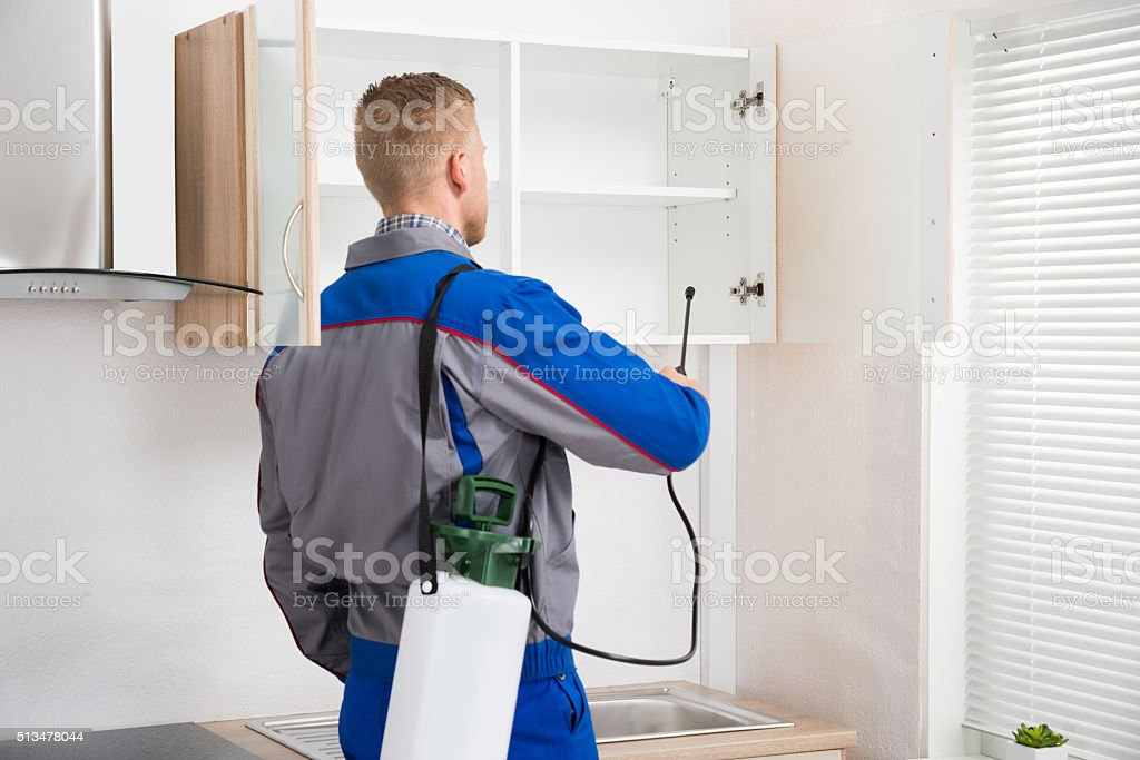 Worker Spraying Insecticide On Shelf stock photo