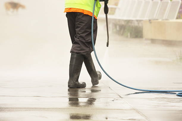 worker steam cleans sidewalk dog - power in nature stock photos and pictures