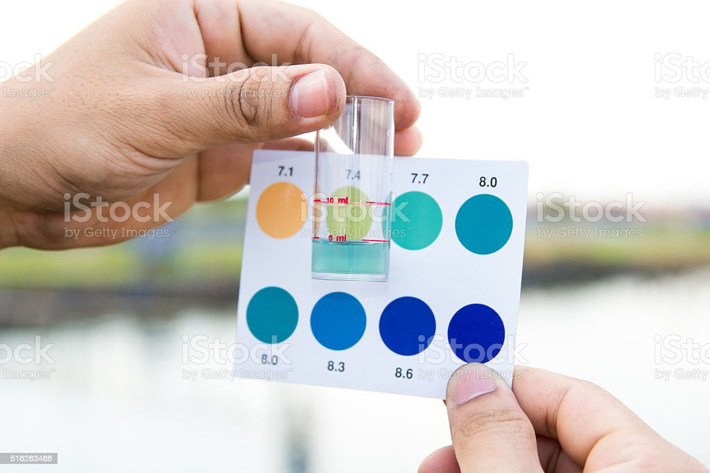 Worker use hands holding test tube with pH indicator comparing stock photo