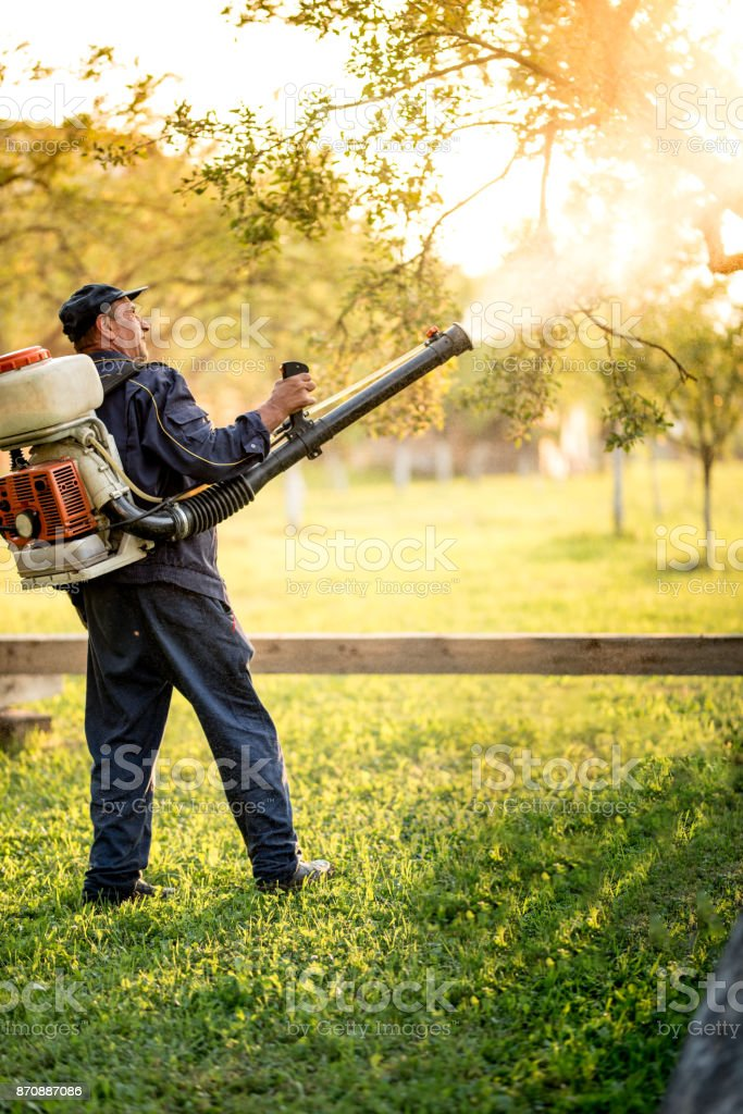 worker using machine for organic pesticide distribution in fruit orchard stock photo