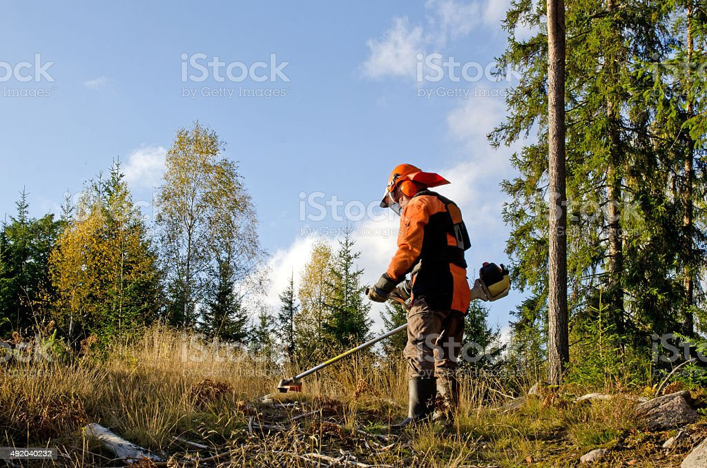 Worker with a brush cutter stock photo