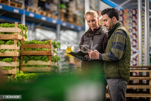 Male and female workers using digital tablet while checking crates of lettuce in warehouse.