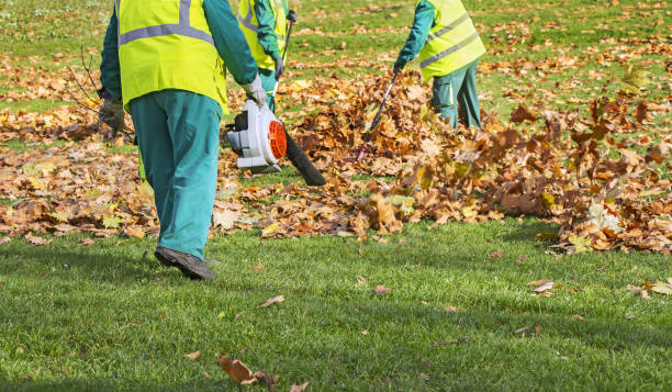 Workers cleaning fallen autumn leaves with a leaf blower Workers cleaning fallen autumn leaves with a leaf blower environmental cleanup stock pictures, royalty-free photos & images