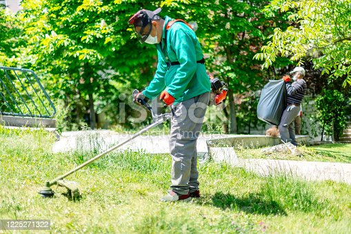 Workers cutting grass with brush cutter in the garden