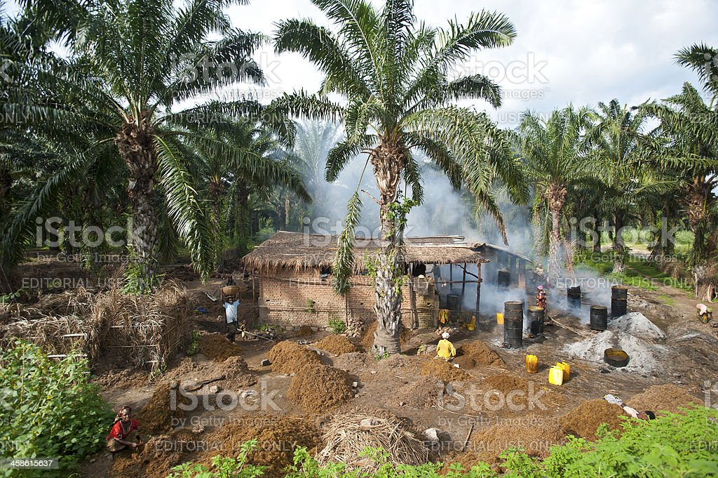 Workers in a palm oil production, Burundi stock photo