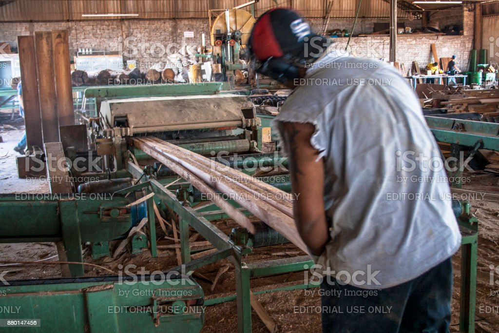Workers in a sawmill stock photo