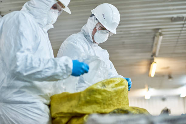 Workers Sorting Plastic on Trash Recycling Plant Side view portrait of two workers  wearing biohazard suits working at waste processing plant sorting recyclable plastic on conveyor belt toxic waste stock pictures, royalty-free photos & images