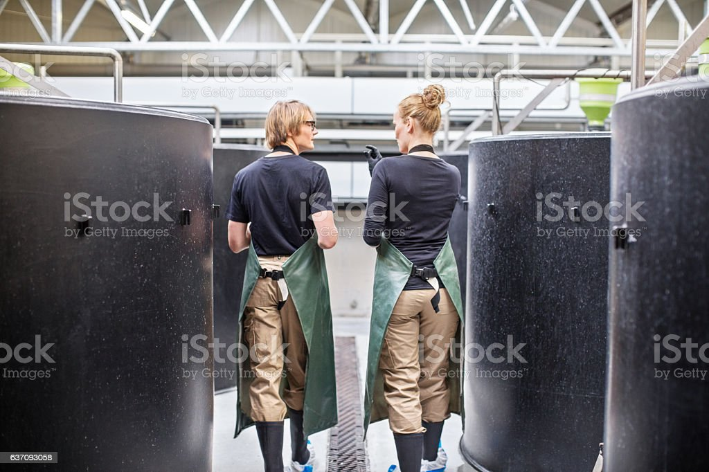 Workers walking through fish hatchery tanks - foto de stock