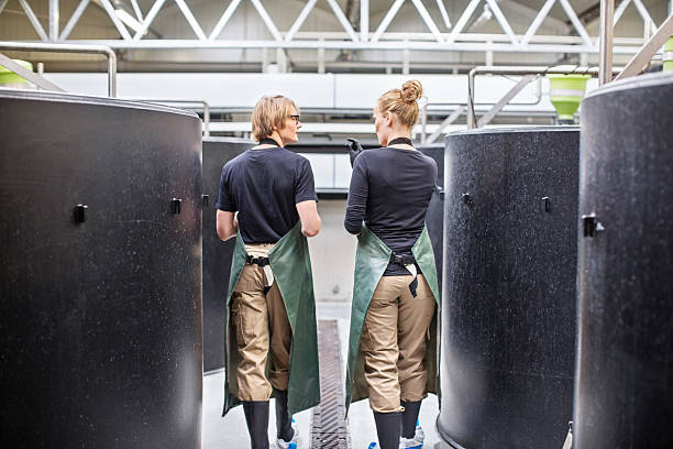 workers walking through fish hatchery tanks - aquaculture stock pictures, royalty-free photos & images
