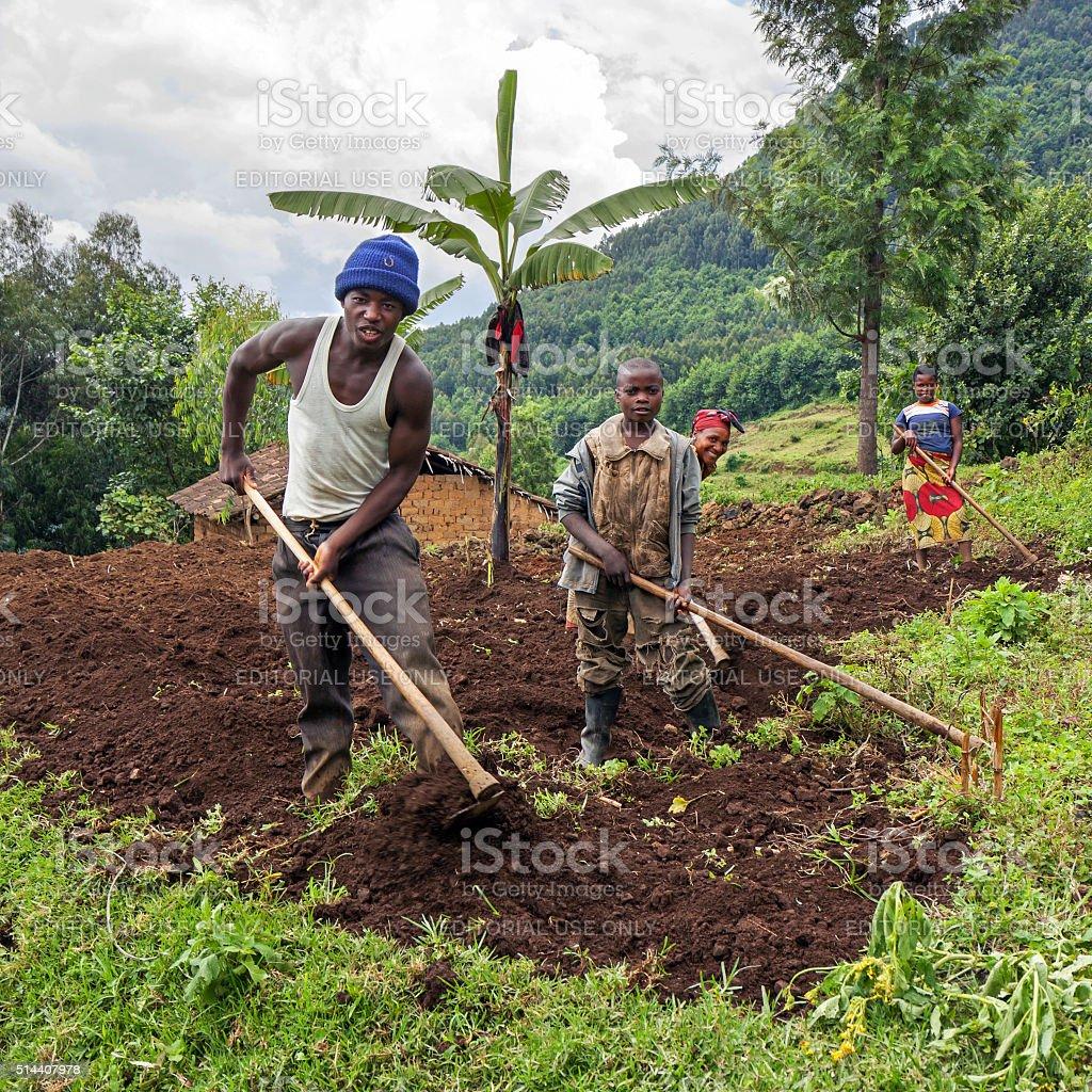Working a field in Rwanda, Africa stock photo