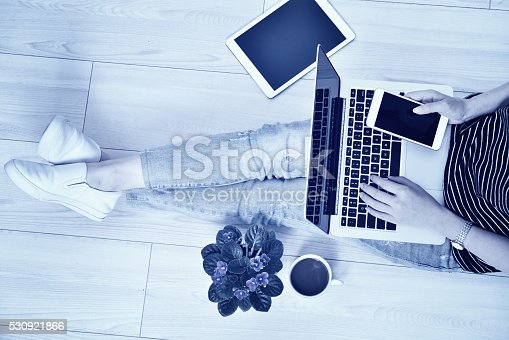 525811918 istock photo Working and Communication 530921866