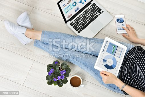 525811918 istock photo Working and Communication 530921984