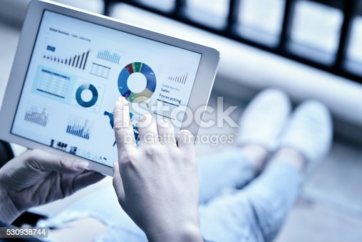 525811918 istock photo Working and Communication 530938744