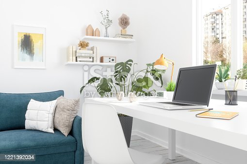 istock Working At Home 1221392034