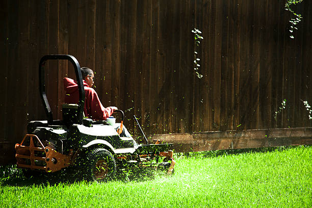 working class.  man mows lawn using industrial lawn mower. - riding lawn mower stock photos and pictures