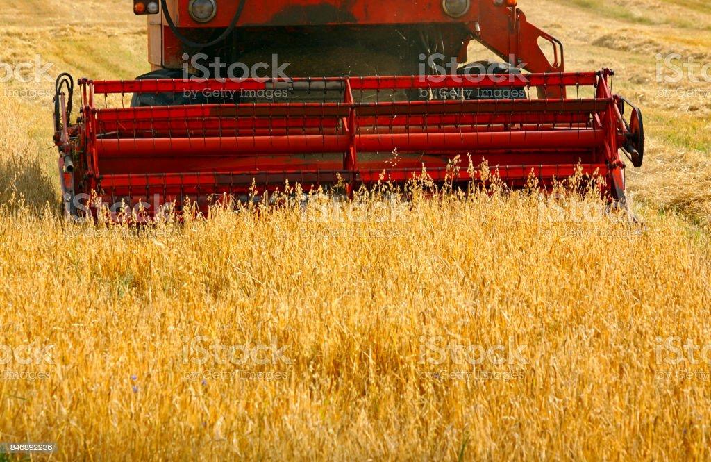 Working combine harvester stock photo