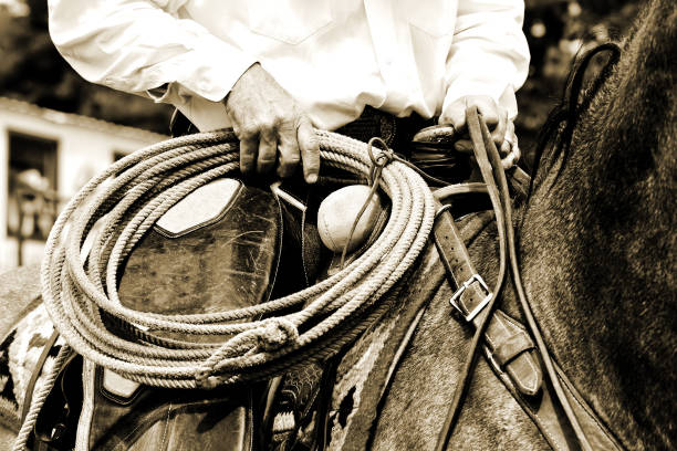 working cowboy riding with rope - sepia tint - rodeo stock pictures, royalty-free photos & images