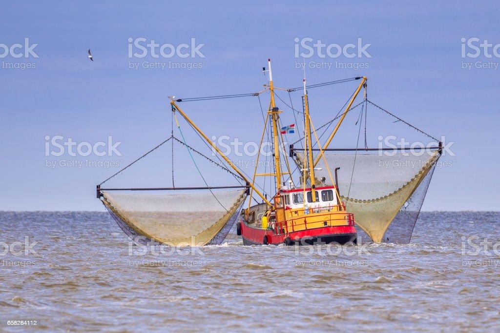 Working Dutch Shrimp fishing cutter vessel stock photo