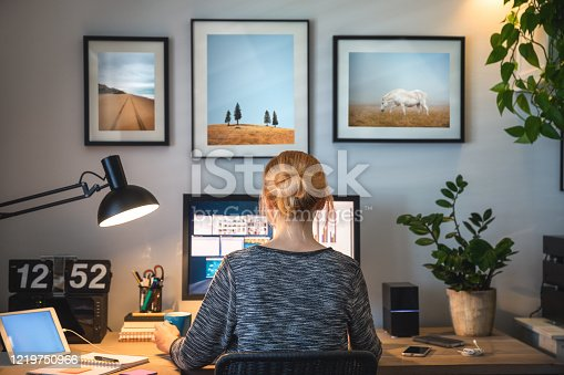 istock Working From Home 1219750966