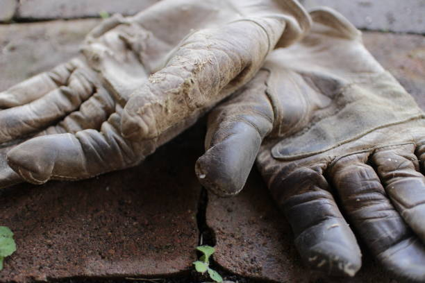 die handschuhe - arbeitshandschuhe stock-fotos und bilder