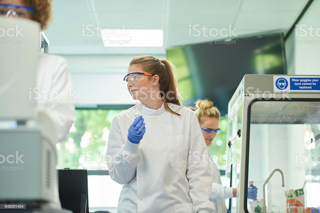 working in a  genetics lab stock photo