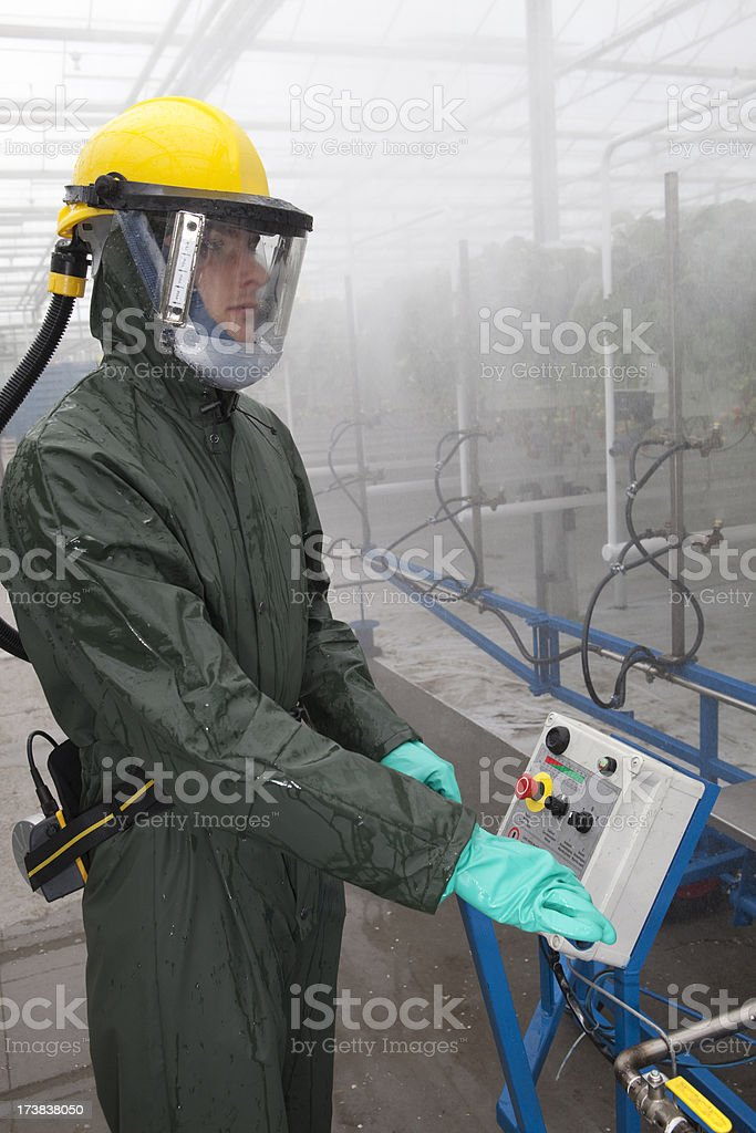 Working in a glasshouse with insecticide. royalty-free stock photo