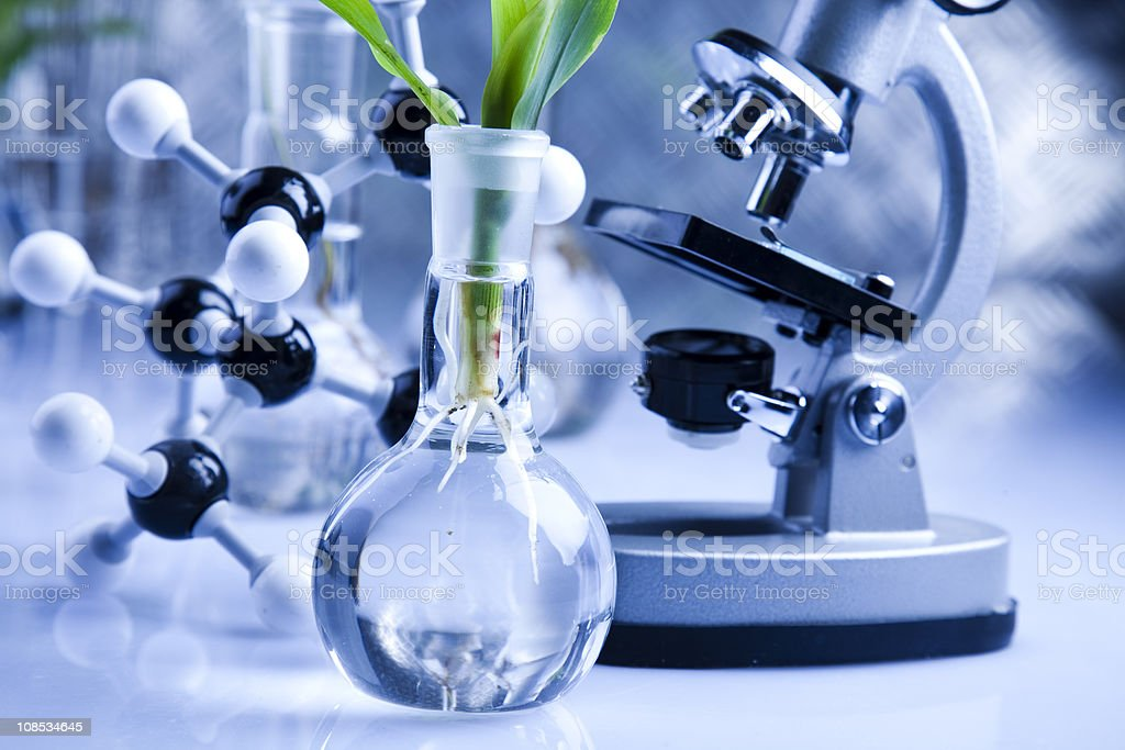 Working in a laboratory stock photo
