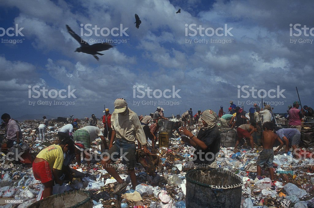 Working in a landfill royalty-free stock photo