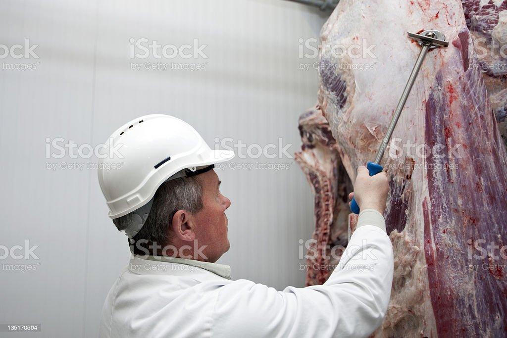 Travaillant dans un slughterhouse - Photo