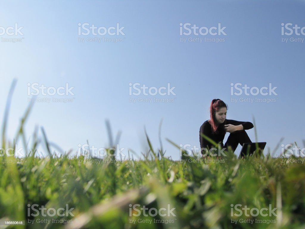 Working in  nature royalty-free stock photo