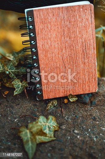 815359666 istock photo Working in nature:Notebook  on the stone background 1148167207