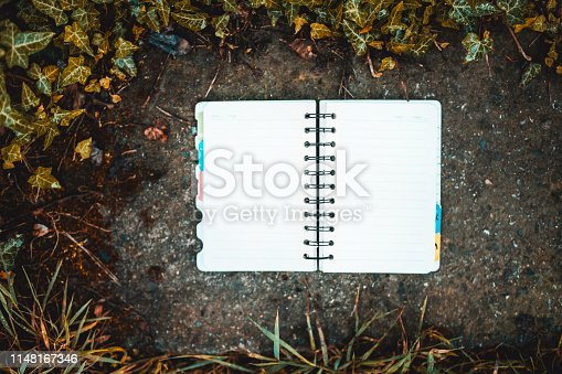 611108702 istock photo Working in nature:Notebook  on the stone background 1148167346