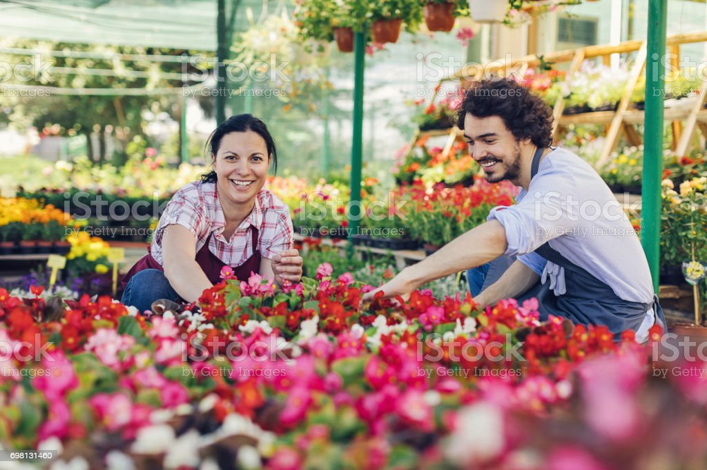 Couple of gardeners working among bright blooms