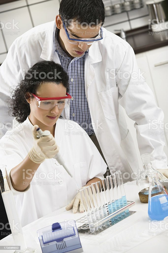 Working in the laboratory royalty-free stock photo