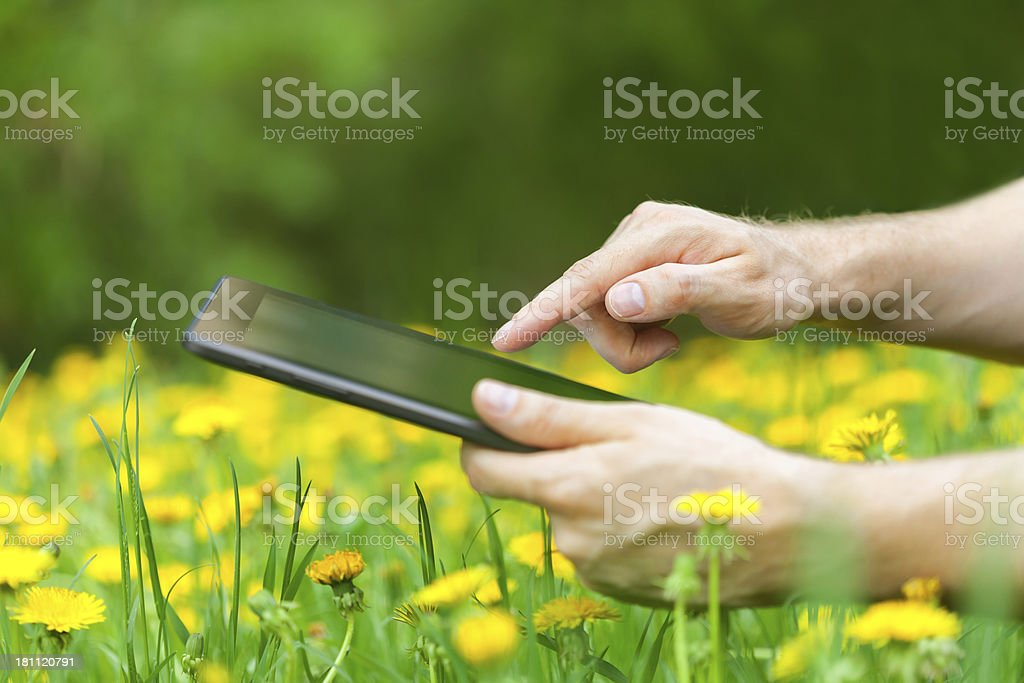 working on a tablet PC royalty-free stock photo