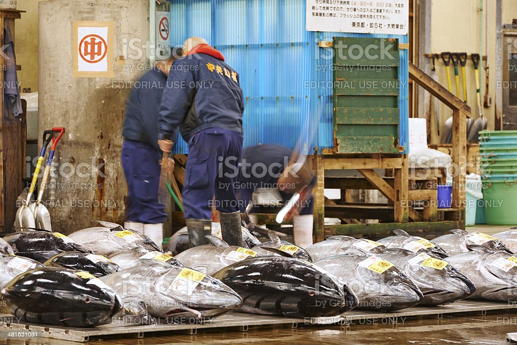 Working on Tuna at Tsukiji Fish Market stock photo
