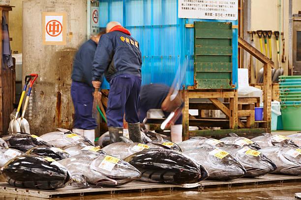 Working on Tuna at Tsukiji Fish Market stock photo