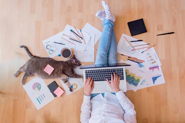 Working space with a cat assistant picture id1014638086?b=1&k=6&m=1014638086&s=612x612&w=0&h=oharwapho3mafgg6zokmecdaaeposho j6xsedcsf u=
