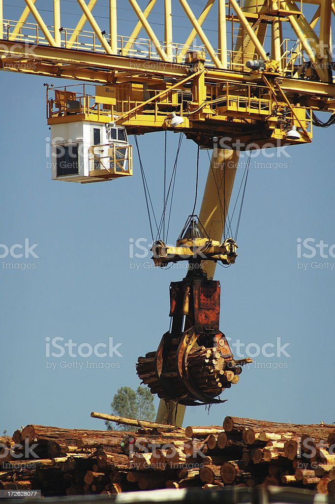 Working the wood royalty-free stock photo