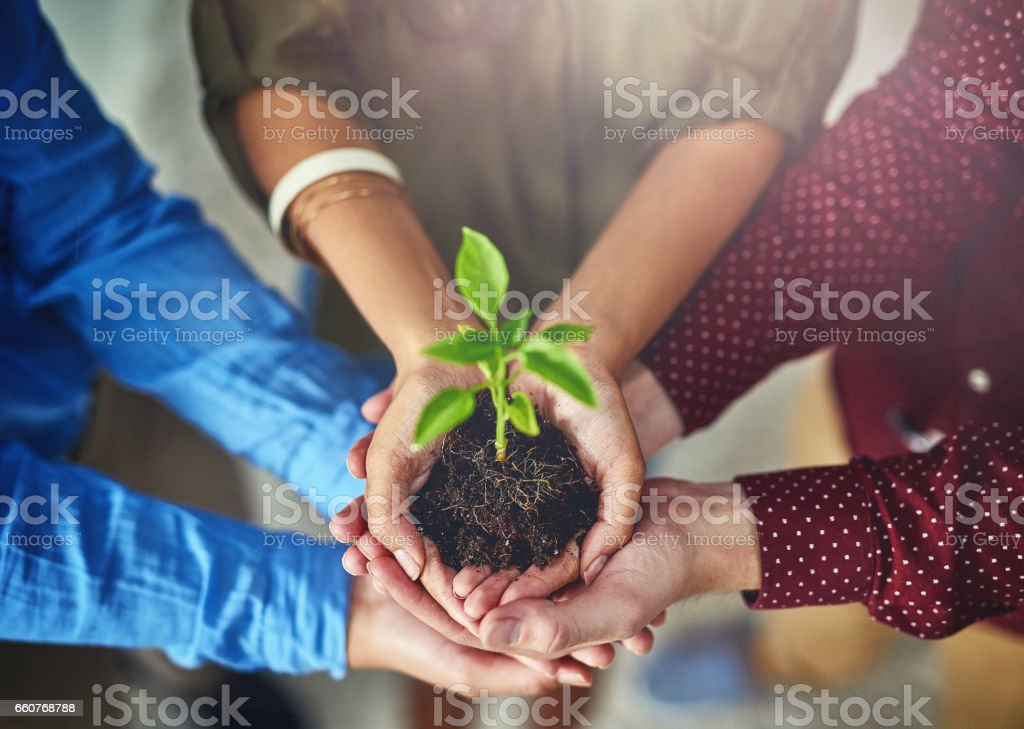 Working together to grow together stock photo