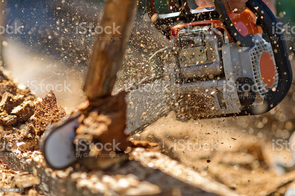Working with chainsaw in spalshes of wooden chips stock photo