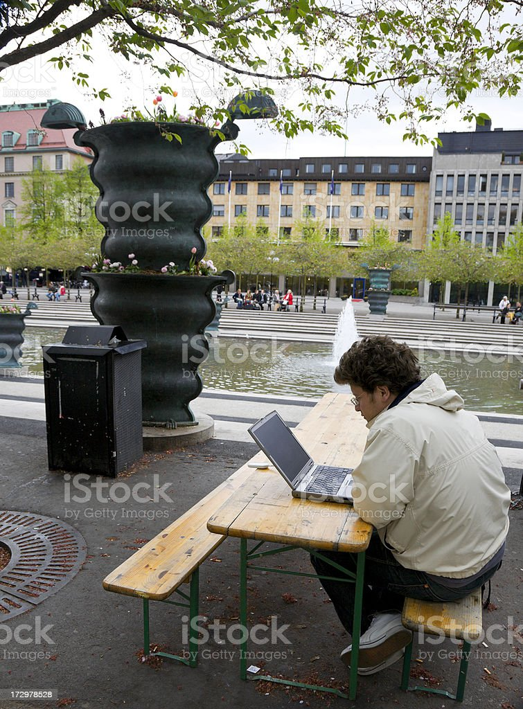 Working with laptop in the park. royalty-free stock photo