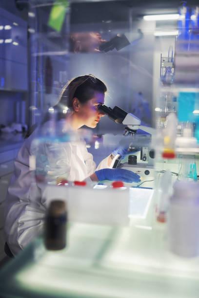 Working with medical samples. Woman using microscope. Futuristi laboratory stock photo